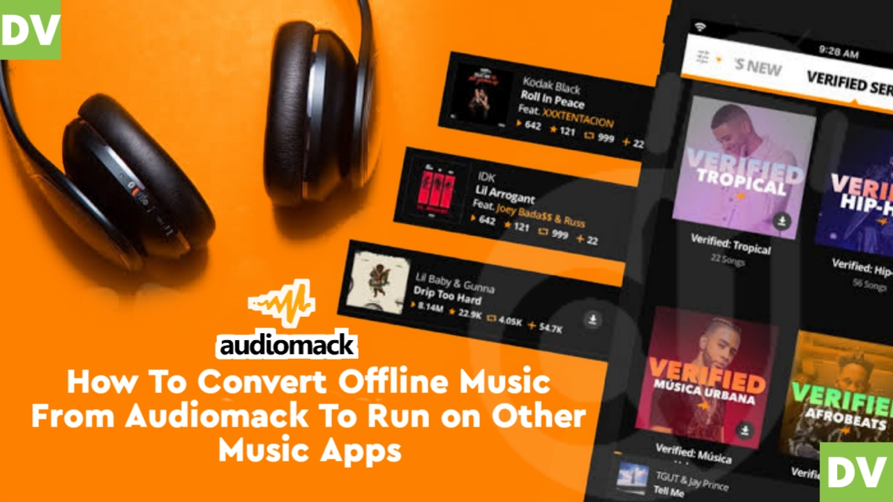 Have you ever tried to Convert downloaded audiomack Offline Music to mp3 and also play on Other Music Apps or even share them?